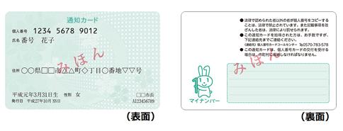 통지 카드